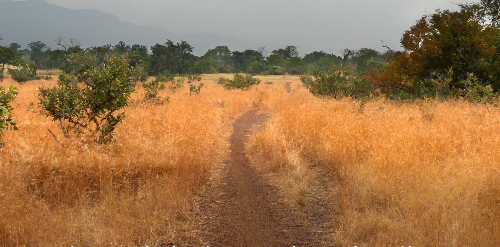 Traversée intime de l'Afrique de l'Ouest - couverture